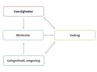 Model van verslavingsgedrag
